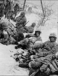 dogatemytank:    1950  US Marines, Chosin Reservoir, Korea