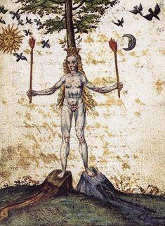 Rosarium Philosophorum (ca. 1550)