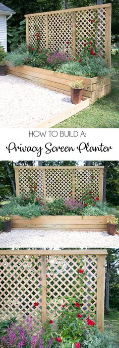 Screen Planter DIY- an inexpensive weekend project with major impact!, Privacy Screen Planter DIY- an inexpensive weekend project with major impact!, Privacy Screen Planter DIY- an inexpensive weekend project with major impact! Privacy Landscaping, Garden Landscaping, Privacy Ideas For Backyard, Diy Landscaping Ideas, Landscaping Software, Landscaping Design, Mailbox Landscaping, Backyard Projects, Planting For Privacy