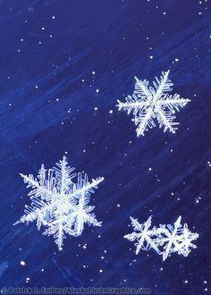 Different Sizes Snowflakes