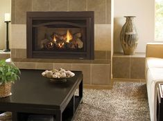 Fireplace inserts are a great way to update an existing masonry fireplace. A traditional open-front wood-burning fireplace usually has an efficiency rating of just according to the Hearth, Patio & Barbecue Association. Fireplace Remodel, Gas Fireplace, Fireplaces, Wood Burning Fireplace Inserts, Home Goods Decor, Home Decor, Fireplace Design, Log Homes, Hearth
