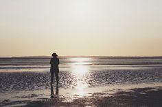 Beach, summer, sunset