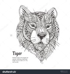 Hand-Drawn Tiger With Ethnic Floral Doodle Pattern. Coloring Page - Zendala…