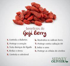 1bb77748c sidney oliveira  Dicas de Saúde - Vitaminas   Minerais. Goji Berry