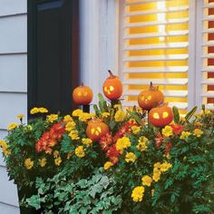 Halloween Window Boxes. So Cute!
