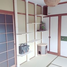 Diy Cat Bed, Diy Bed, Cat Tree, Cat Furniture, Diy And Crafts, Shelves, Display, Architecture, Neko