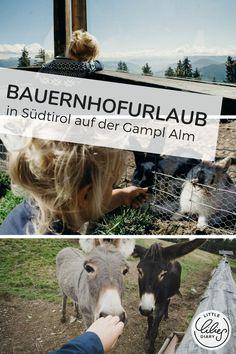 Wenn ihr #Bauernhofurlaub in #Südtirol mit Kindern plant, dann schaut euch die Gampl Alm und die herrliche Ferienregion #Lana auf www.little-lilies-diary.com unbedingt an!
