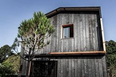 Charred Wood, Architecture, Shed, Outdoor Structures, Cabin, House Styles, Home Decor, Home, Arquitetura