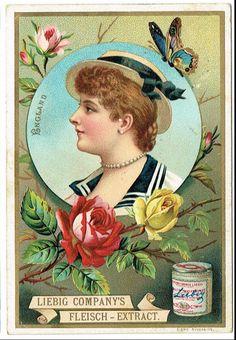Vintage Labels, Vintage Postcards, Vintage Ads, Vintage Images, Botanical Flowers, Vintage Magazines, Vintage Advertisements, Illustration Art, Artwork