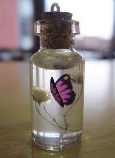 Butterfly in a bottle necklace is cute and stylish. It has a spring time flare in it that i personnaly love