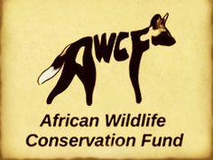 best animal conservation logos | African Wildlife Conservation Fund logo