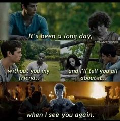 The Maze Runner Memes - 087 - Wattpad - Just died. Newt Maze Runner, Maze Runner Thomas, Maze Runner Memes, Newt Thomas, Maze Runner Movie, Thomas Brodie, James Dashner, When I See You, Told You So