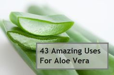 43 Uses For Aloe Vera Reduces eye puffiness, daily moisturizer for eczema, shaving gel/aftershave, strengthens weak nails (massage into nail beds everyday), soothes razor burn, acne scar treatment (apply directly), sunblock against UV rays #soulfulindulgence http://www.facebook.com/wellnessnmotion
