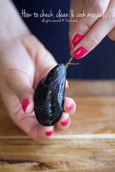 HOW TO CHECK, CLEAN & COOK MUSSELS - DiepLicious House Cleaning Tips, Cleaning Hacks, All You Need Is, Tablet Recipe, Homemade Toilet Cleaner, Hard Water Stains, Glass Cooktop, Clean Dishwasher, Toilet Cleaning