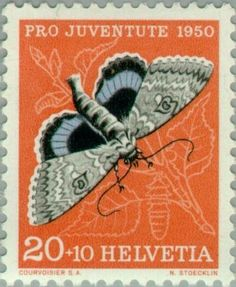 Znaczek: Blue Underwing (Catocala fraxini) (Szwajcaria) (Pro Juventute: Insects, Theophil Sprecher v. Bernegg) Mi:CH 552,Sn:CH B198,Yt:CH 504,AFA:CH 554,Zum:CH J135
