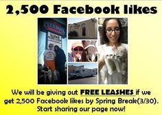 https://www.facebook.com/pages/Mesa-Veterinary-Clinic-Paws-N-Hooves-Mobile-Vet-Clinic/140188126027957?fref=nf