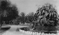 St James Park - 1891 - Los Angeles