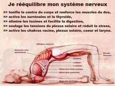 Yoga Yoga Fitness, Plexus Solaire, Reiki Healer, Acupressure Treatment, Acupuncture, Reiki Symbols, Yoga Posen, Salud Natural, Yoga Positions