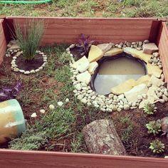 Box turtle habitat                                                                                                                                                      More