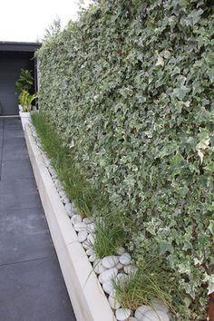 Buitenmuur stucen: hoe muren stucen? | vtwonen