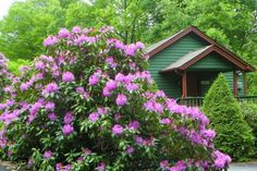 Pawnee Cottage | Vacation Rental in Boone | Blowing Rock, NC | Yonahlossee Resort | Carolina Cabin Rentals