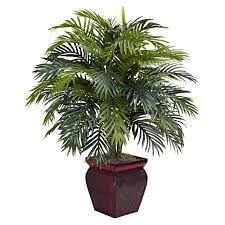 plant plan - Google-søgning