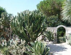 La Cutura Giardino Botanico, Puglia, Italy