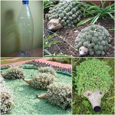 Easy and sooo cute! The face is made with twine hot glued to bottle and buttons for eyes!  Cut out along length of bottle so that soil and cactus can be planted. Voila`