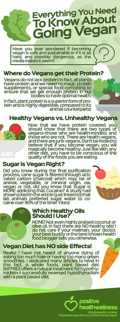 Everything You Need To Know About Going Vegan – Positive Health Wellness Infographic