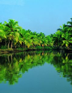 Kerala Backwaters,India: