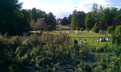 Parco Sempiore in Milan provides some welcome nature to this lively city: great place to run!