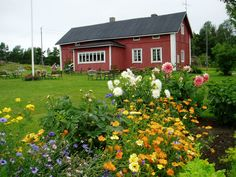 Westergrannas kaffestuga Finland, House Styles, Plants, Home Decor, Decoration Home, Room Decor, Plant, Home Interior Design, Planets