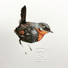 CHUCAO Chilean bird in watercolor