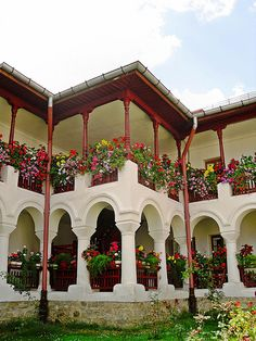 Beautiful flowers at Agapia Monastery, Romania