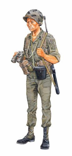 essay on vietnam veterans