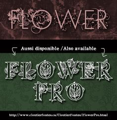 Flower Font | dafont.com An entire website of incredibly beautiful fonts. It looks like the fonts are freeware or shareware - still checking it out.