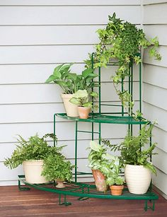 Time to start thinking about my outdoor space!