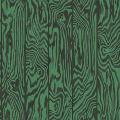 Cole and Son Zebrawood wallpaper in Emerald from The Curio Collection Wallpaper Samples, Wallpaper Online, Print Wallpaper, Wild Animal Wallpaper, Wallpaper Collection, Cole And Son Wallpaper, Striped Wallpaper, Fabric Houses, Crisp Image