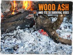 Wood Ash and Its 10 Survival Uses