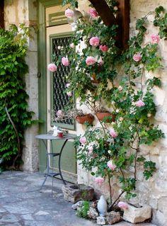My inner landscape Garden Nook, Side Garden, Garden Cottage, Rose Trellis, Climbing Roses, Garden Care, Container Plants, Dream Garden, Garden Inspiration