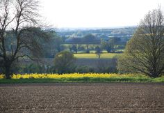 Cambridgeshire countryside from Fullers Hill Cottages
