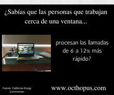 ¡Asegúrate de que tu Asistente Virtual trabaje cerca de una ventana! https://www.octhopus.com