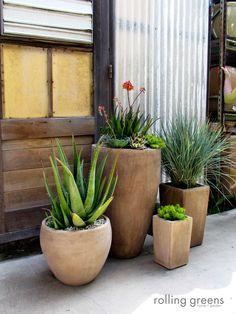 Stunning Outdoor Arrangements | Rolling Greens