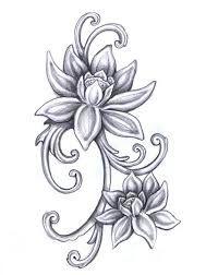 Image result for lotus flower