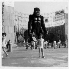 King Kong no PlayCenter em 1979 1976 Movies, King Kong Vs Godzilla, Amusement Park, Nostalgia, City, Magic City, Vintage Dolls, Good Times, Brazil Cities