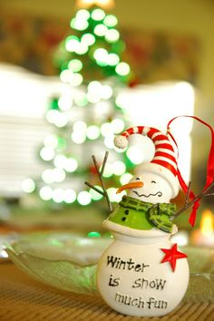 lizjohnsonimagery:  christmas in florida