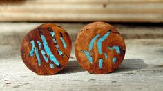 19mm Australian Eucalyptus Resin Burl Wood ear plugs, Turquoise & Opal stone inlay, Crazy beautiful and hand crafted one inch gauge by MustLoveWoodPlugs on Etsy