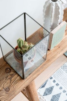 Cactus in square glass jar | Styling Sabine Burkunk | Photographer Hans Mossel | vtwonen September 2014