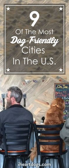 These places are pawesome!
