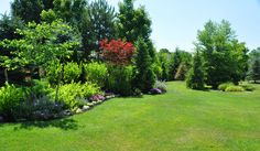 Residential Landscape Pictures | Landscape Berms Spruce and Shrubs